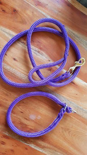 Set Halsband/Leine